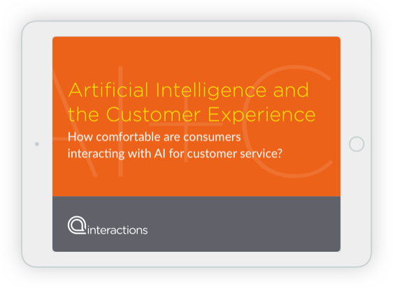 Artificial Intelligence and the Customer Experience